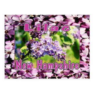 Sering - de NH Bloem van de Staat Briefkaart