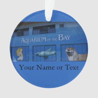 SF aquarium van het Ornament van de Baai