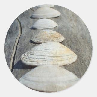 Shells van het tweekleppige schelpdier Stickers