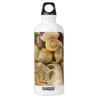 Shells van het zee waterfles