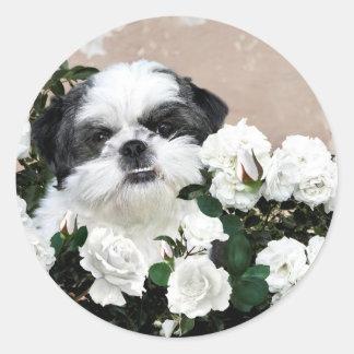 Shih Tzu en rozen Ronde Sticker
