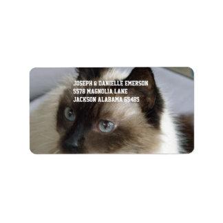 Siamese Kat Addressticker