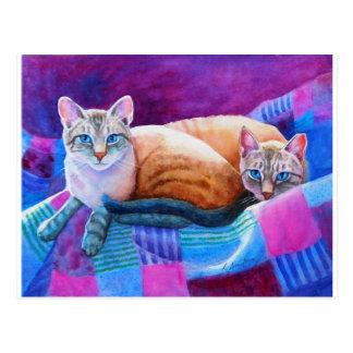 Siamese Katten van het Punt van de lynx Briefkaart