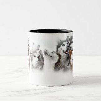 Siberische Schor Tweekleurige Koffiemok
