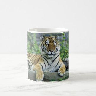Siberische tijger, koffiemok