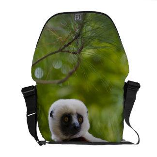Sifaka van Coquerel in bos 2 Messenger Bag
