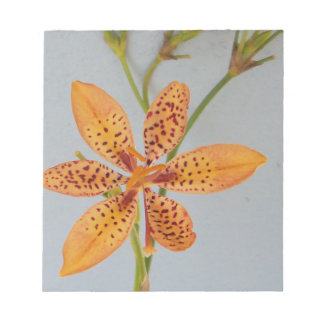 Sinaasappel bevlekte Iris genoemd een lelie van Notitieblok