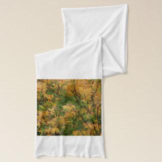 Sjaal met herfstkleuren sjaal
