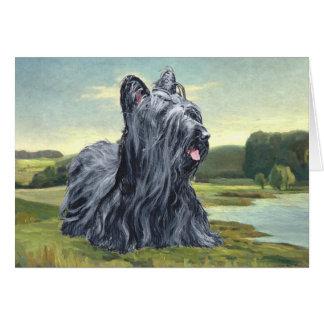 Skye Terrier in Pastoraal Landschap Briefkaarten 0