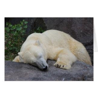Slaap Ijsbeer Notitiekaart