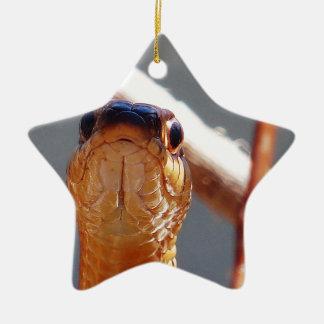 slang keramisch ster ornament