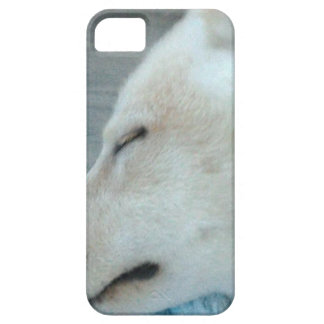 Slaperige hond barely there iPhone 5 hoesje