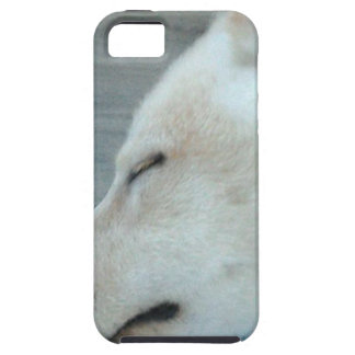Slaperige hond tough iPhone 5 hoesje