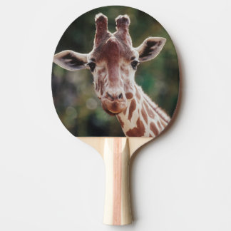 Sluit omhoog van Giraf Met een netvormig patroon Tafeltennis Bat
