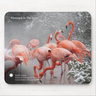 Smithsonian Flamingo's van   in de Sneeuw Muismat