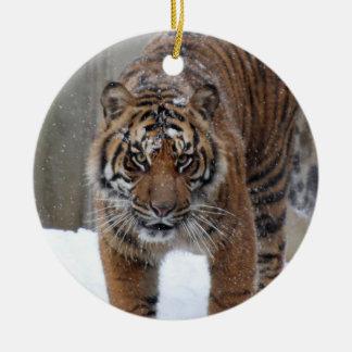 Smithsonian Tijger Sumatran Damai van   Rond Keramisch Ornament