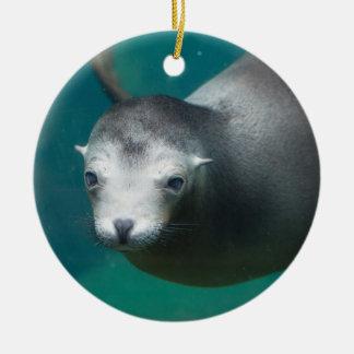 Smithsonian Zeeleeuw van | Rond Keramisch Ornament