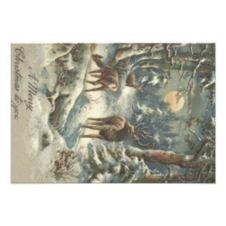Sneeuw van de Kerstboom van het rendier de Foto Afdruk