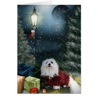 Sneeuwklokje de Maltese Kerstkaart Briefkaarten 0