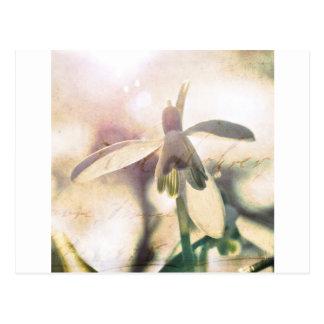 Sneeuwklokje lyrische 01.01q briefkaart