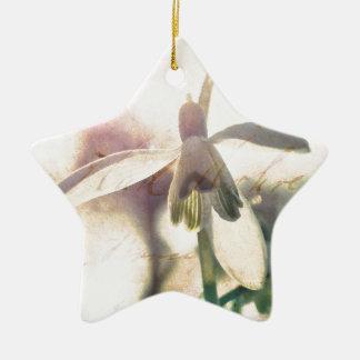 Sneeuwklokje lyrische 01.01q keramisch ster ornament
