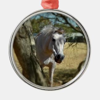 Sneeuwwitje het Paard, _ Zilverkleurig Rond Ornament