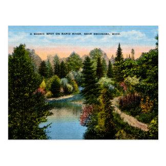 Snelle Rivier Escanaba, Michigan Briefkaart