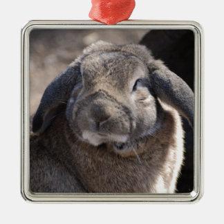 Snoei Eared Konijn Zilverkleurig Vierkant Ornament