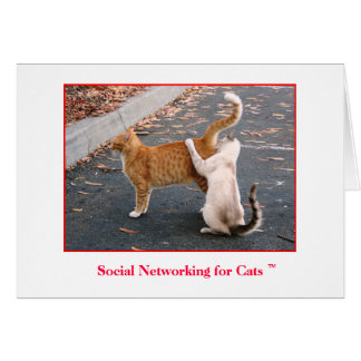 Sociaal Voorzien van een netwerk voor de Spatie Kaart