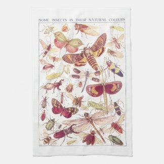Sommige Insecten in Hun Natuurlijke Kleuren Theedoek