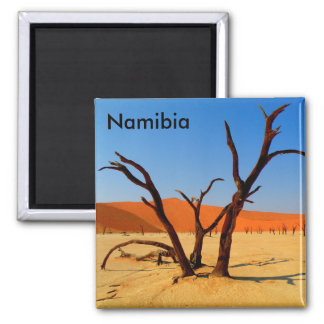 Sossusvlei Namibie Magneet