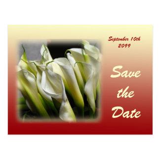 Sparen het briefkaart van de Datum - Witte Calla