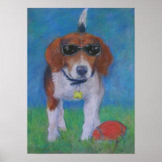 Sparky Hond:  Kijkend Koel poster