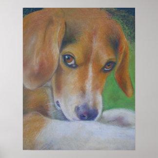 Sparky Hond:  Ogen Poster