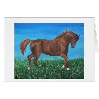 Spatie van de Kaart van het paard de Lopende