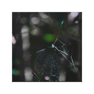 Spinneweb Canvas Afdruk