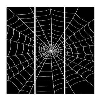 Spinneweb Drieluik