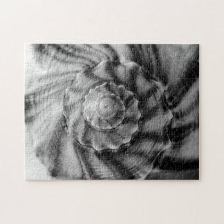 Spiraalvormig Zwart-wit Shell, Puzzel