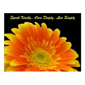 Spreek vriendelijk Briefkaart Gerbera