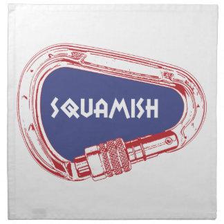 Squamish die Carabiner beklimmen Servet