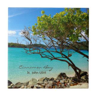 St. John USVI van de Baai van de kaneel het Keramisch Tegeltje