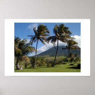 St. Kitts Aanplanting Poster