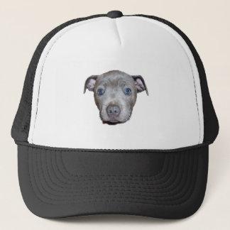 Staffordshire Bull terrier het Gezicht van het Trucker Pet
