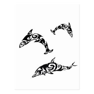 Stammen Dolfijn Sealife.png Briefkaart