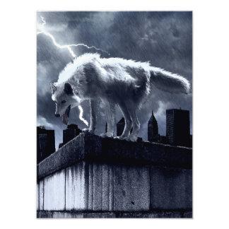 Stedelijke Wolf Foto Kunst