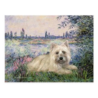 Steenhoop Terrier 4 - door de Zegen Briefkaart