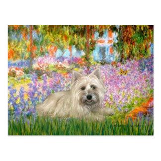 Steenhoop Terrier 4 - Tuin Briefkaart