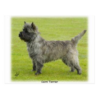 Steenhoop Terrier 9R071D-129 Briefkaart