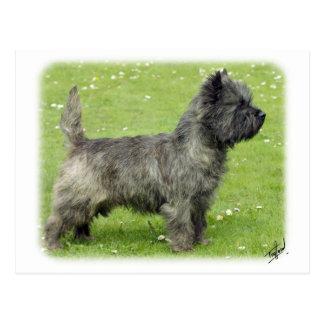 Steenhoop Terrier 9Y004D-024 Briefkaart