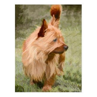 Steenhoop Terrier dat - schildert Briefkaart
